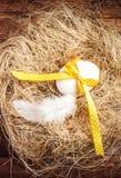 Jerarquía de Pascua con el huevo, la cinta amarilla y la pluma blanca en de madera Fotos de archivo libres de regalías