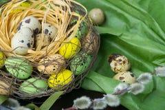 Jerarquía de Pascua, decoración del día de fiesta, flores, cordones y cintas, gatito Fotografía de archivo libre de regalías