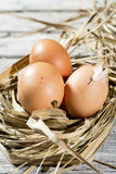 Jerarquía de Pascua, huevos en paja Imagen de archivo