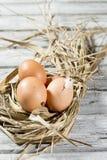 Jerarquía de Pascua, huevos en paja Imagenes de archivo