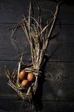 Jerarquía de Pascua, huevos en paja Fotografía de archivo libre de regalías