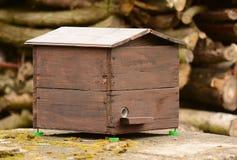 Jerarquía del abejorro Imagen de archivo libre de regalías