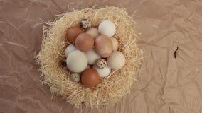 Jerarquía del movimiento de la cacerola de la visión superior con los huevos almacen de metraje de vídeo