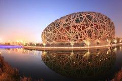 Jerarquía del pájaro en el crepúsculo en Pekín Fotografía de archivo libre de regalías