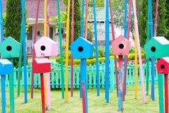 Jerarquía del pájaro en el jardín Fotos de archivo