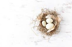 Jerarquía rústica de Pascua con los huevos y las plumas Fotografía de archivo