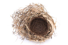 Jerarquía vacía del pájaro Fotografía de archivo libre de regalías