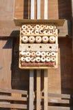 Jerarquías múltiples para Mason Bees Fotografía de archivo libre de regalías