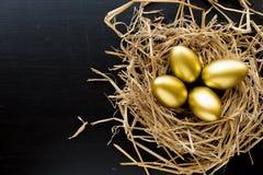 Jerarquice por completo de huevos de oro en fondo negro girl financiero lleva a cabo un paquete de placer de los dólares foto de archivo libre de regalías