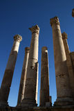 Jerash Artemis Temple in Jordan Stock Photos