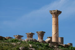 Jerash, Jordan, temple of artemis Stock Image