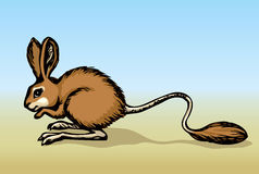 Jerboa. Vector drawing Stock Images