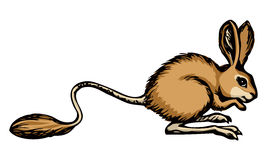 Jerboa. Vector drawing Royalty Free Stock Image