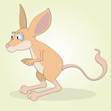 Jerboa Stock Photography