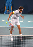 Jeremy Chardy (FRA), tennis player Stock Photos