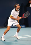 Jeremy Chardy (FRA), tennis player Royalty Free Stock Photo