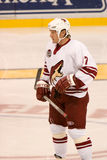 Jeremy Roenick of the Phoenix Coyotes Stock Images