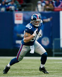 Jeremy Shockey, New York Giants Stock Photo