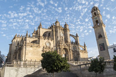 Jerez de la frontera Cathedral, Spain.  stock image