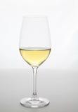 Jerez exponeringsglas Arkivfoto