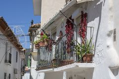Jerez Marquesado fotografia stock libera da diritti