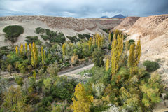 Jerez oasis. (Quebrada de Jerez) at Toconao , Chile royalty free stock image