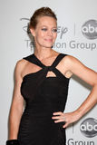 Jeri Ryan Stock Photography