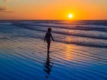 Jericoacoara Beach Royalty Free Stock Photography