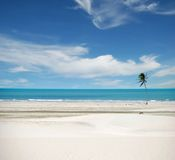 Jericoacoara Brasil Royalty Free Stock Photography