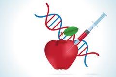 Jeringuilla con la manzana y la molécula de la DNA Imagenes de archivo