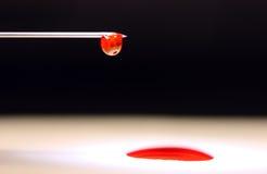 Jeringuilla con sangre Foto de archivo