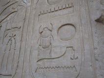 Jeroglíficos del escarabajo Foto de archivo libre de regalías
