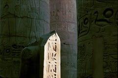 Jeroglíficos en el templo de Karnak Fotos de archivo libres de regalías