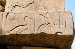 Jeroglíficos en Karnak, Egipto Imagen de archivo libre de regalías
