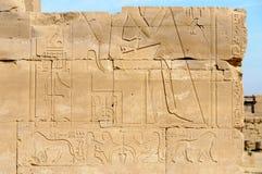 Jeroglíficos en Karnak, Egipto Imágenes de archivo libres de regalías