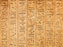 Jeroglíficos en la pared fotos de archivo libres de regalías