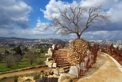 Jerozolima Park Fotografia Royalty Free