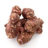 Jerozolimskiego karczocha warzywo Fotografia Stock