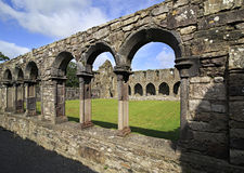 Free Jerpoint Abbey Royalty Free Stock Image - 48667036