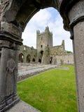 Jerpoint Abbey near Thomastown, County Kilkenny, Ireland. stock image