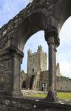 Jerpoint abbotskloster Arkivbilder