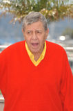 Jerry Lewis Royalty Free Stock Photos