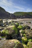 Jersey coastline, Great Britain Royalty Free Stock Images