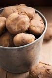 Jersey kungliga nya potatisar Royaltyfria Bilder
