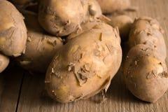 Jersey kungliga nya potatisar Arkivbild
