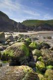Jersey kustlinje, Storbritannien Royaltyfria Bilder
