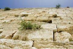 Jerusalén Foto de archivo