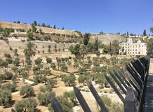 jerusalén Israel Fotografía de archivo