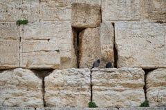 Jerusalén, pared occidental Fotos de archivo libres de regalías