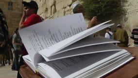 JERUSALÉN, VERANO 2014 - libro del torah en Jerusalén almacen de video